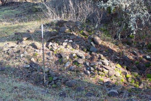 Gold Rush era tailing piles, Lwr Gas Pt., 1-08